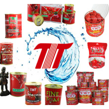 Common Price Tomato Paste