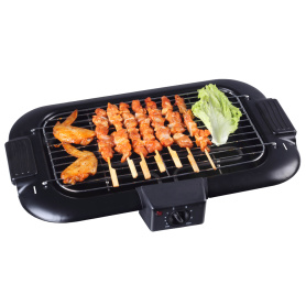 Electric Indoor Grill Searing Grill with Removable Plates