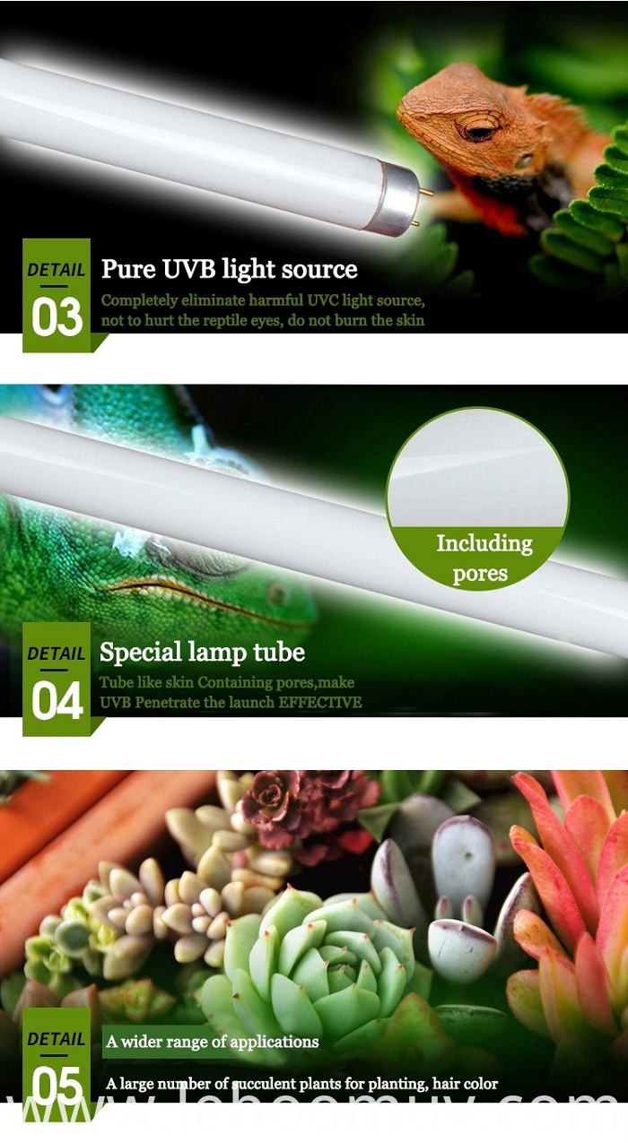 UVB Fluorescent Tube Light