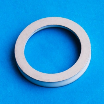 High Precision Metallized Aluminium Oxide Ceramic Ring