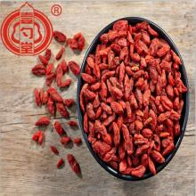 The Dried Red Goji Berry Fruit