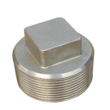 Stainless Steel Pipe Plug