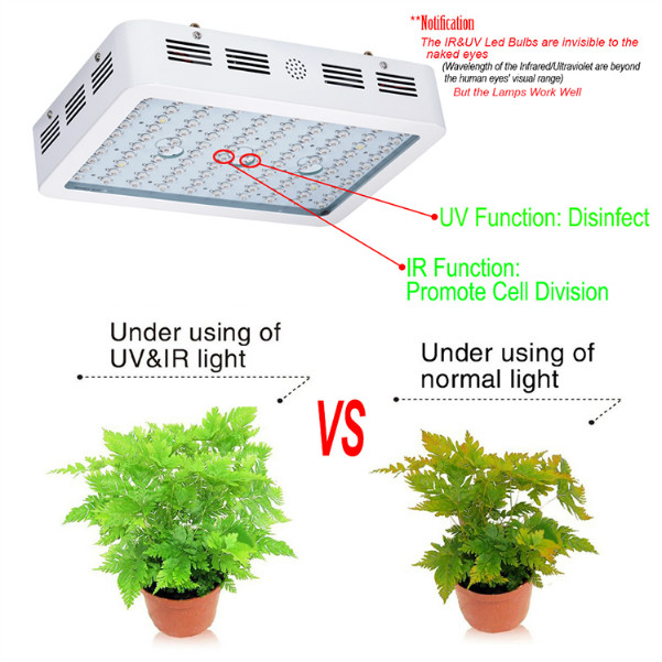 Industrial Grow Light