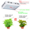 Malosiaga Faʻasaoina 600W LED Plant Growing Light