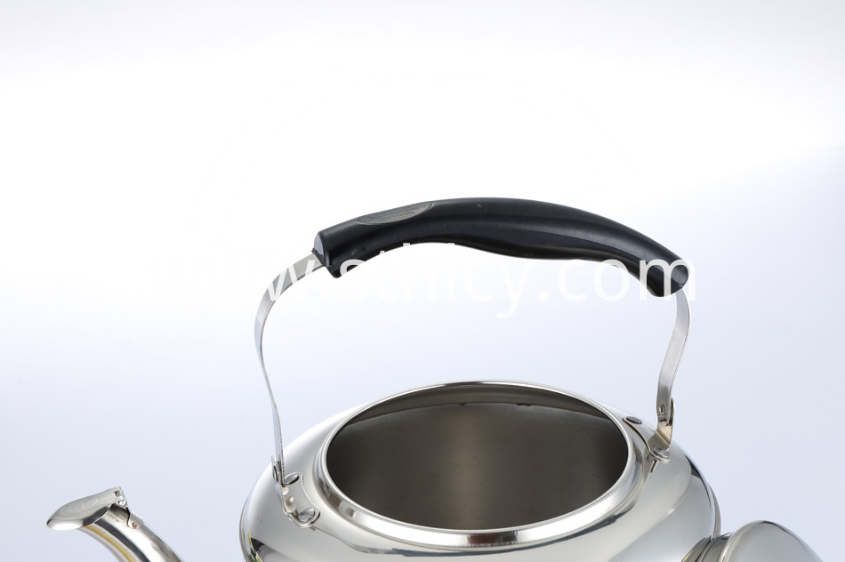 best stainless steel kettle