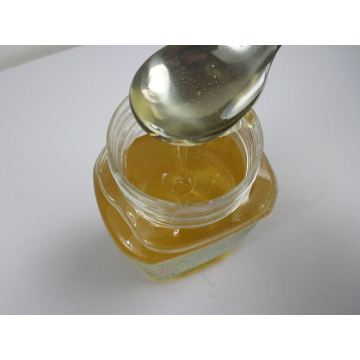 professional supplier export bulk linden honey wholesale