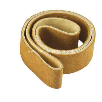 Reliable for Endless Felt Belt PBO Needle Felt Para Aramid Conveyor Belt supply to Spain Manufacturers