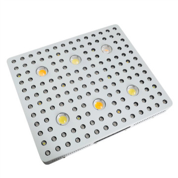 COB LED Grow Light Cbx3590 cxa2530 Гідрапоніка