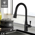 Single Hole Kitchen Sink Faucet With Sprayer