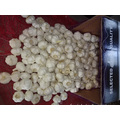 Loose Packing Fresh New Pure White Garlic