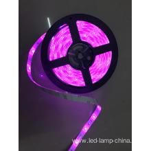 5050SMD 24V Pink Led Strip light