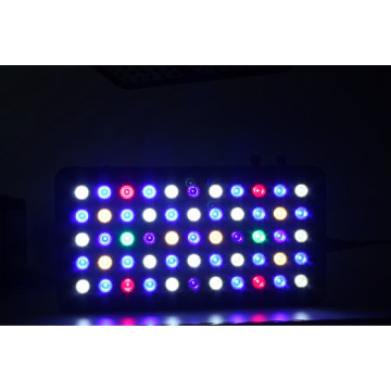 Fish tank 165W Dimmable Led Aquarium lights