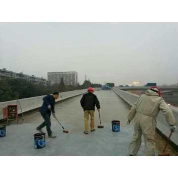 China Gold Supplier for Waterproof Paint For Concrete Waterproofing membranes for concrete bridge decks supply to Portugal Suppliers