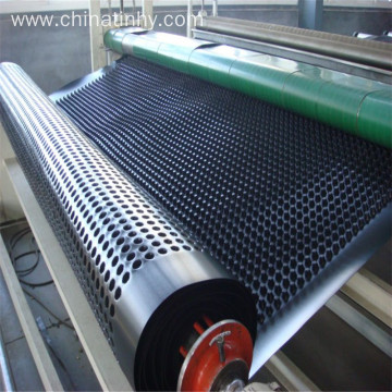 Anti-Seeapge Sidewall  HDPE Dimple Drainage Board