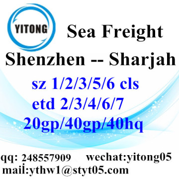 Shenzhen Sea Freight Shipping Agent to Sharjah
