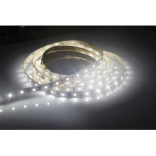 Temperature Adjustable Dimmable SMD2835 LED Strip Light