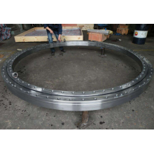 RTC100 Slewing Ring Bearing