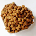wholesale bulk dog food