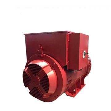 Low Voltage Single Bearing Electric Power Generator