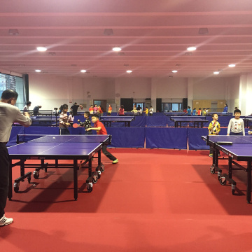 professional game use ping-pang ball court flooring
