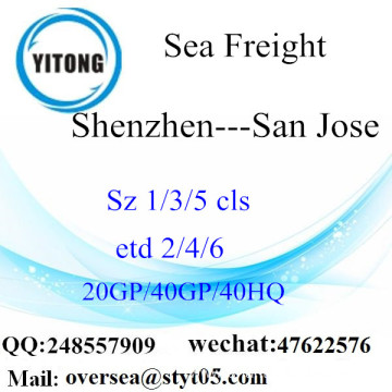 Shenzhen Port Sea Freight Shipping To San Jose