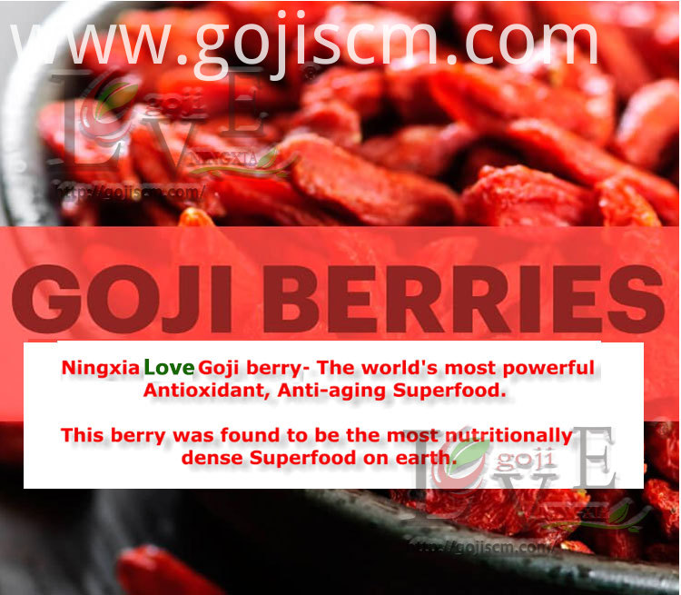 GOJI BERRY ORGANIC description