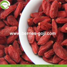 Factory Nutrition Distributor Conventional Goji Berries
