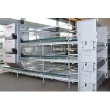 H Type Layer Chicken Equipment