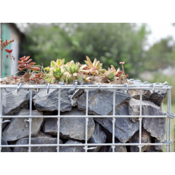 Stainless Steel PVC Coated Gabion Baskets
