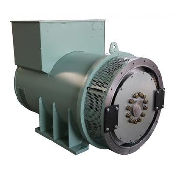 EvoTec Lower Voltage Synchronous Generator