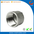 SS316 camlock fitting Male Threaded Adaptor Part DP