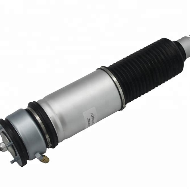 Air Suspension Shock BMW Without ADS Rear Left