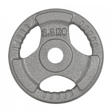 2.5KG Cast Iron Weight Plate