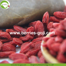 Factory Supply Healthy Fruit Best Quality Goji