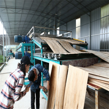 Low Cost Lumber Veneer Drying for Sale