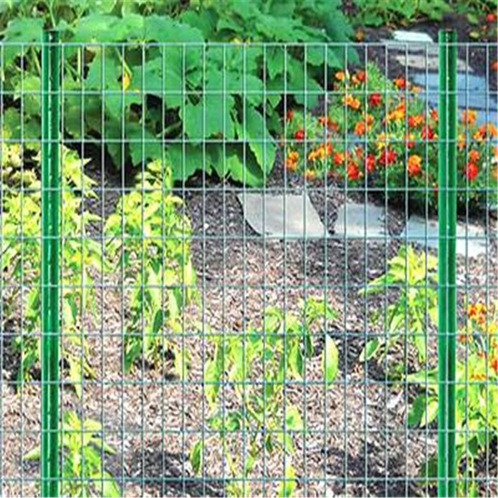 Pvc Welded Wire Mesh For Garden Fencing China Manufacturer