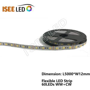 Outdoor Colorful RGBW LED Strip for Christmas Tree