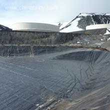 Geomembrane Having Long Term Durability of Strength