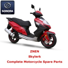 Manufacturer for for Supply Znen Scooter Starter Motor, Znen Scooter Carburetor, Znen Scooter CDI to Your Requirements Znen Skylerk Complete Motorcycle Spare Part supply to United States Supplier