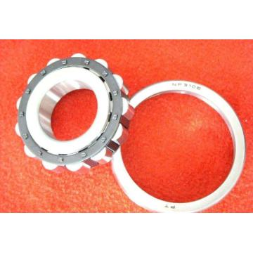 Double Row Cylindrical Roller Bearing (3182172K/ NN3072K/W33)