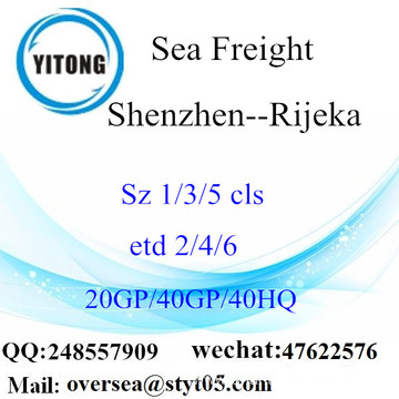 Shenzhen Port Sea Freight Shipping To Rijeka
