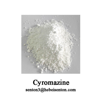 Factory source manufacturing for Agrochemical Crop Protection Insecticide, White  Powder Insecticide Cyromazine, Cyromazine Poison To Kill Flies Wholesale from China Effective Agrochemical Insecticide Pesticide Cyromazine supply to United States Suppliers