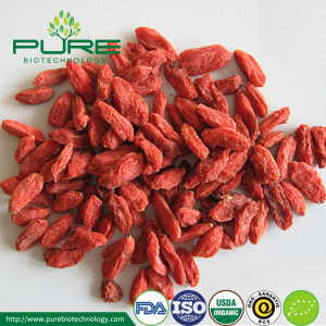 Wholesale Ningxia Organic Certified dried goji berry