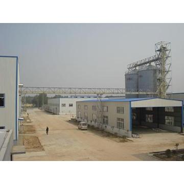 800t/d Full Fat Soybean Powder Production Line