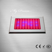 Good quality 100% for Led Grow Light 55pcs*3W Led Square Led Grow Light supply to Tanzania Manufacturers