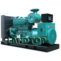 250KW Diesel Generator with Yuchai Engine Price