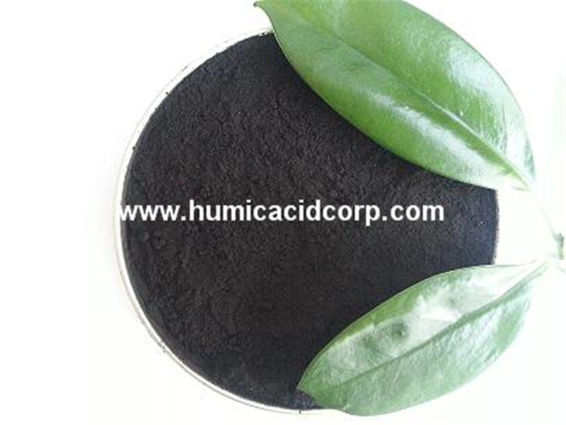 Organic Soil fertilizer Mineral Humic Acid CAS 1415-93-6