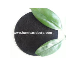 Best Quality for China Humic Acid,Humic Acid Powder,Nitro Humic Acid Supplier Leonardite mineral humic acid soil base fertilizer supply to Bhutan Factory