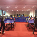 Indoor PVC Rolling Table Tennis Court Surface