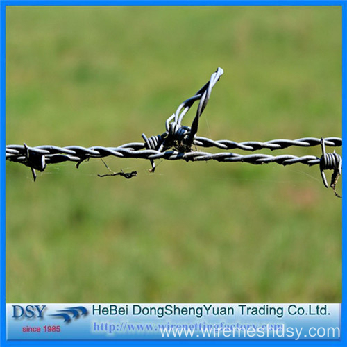 Professional Galvanized Barbed Wire